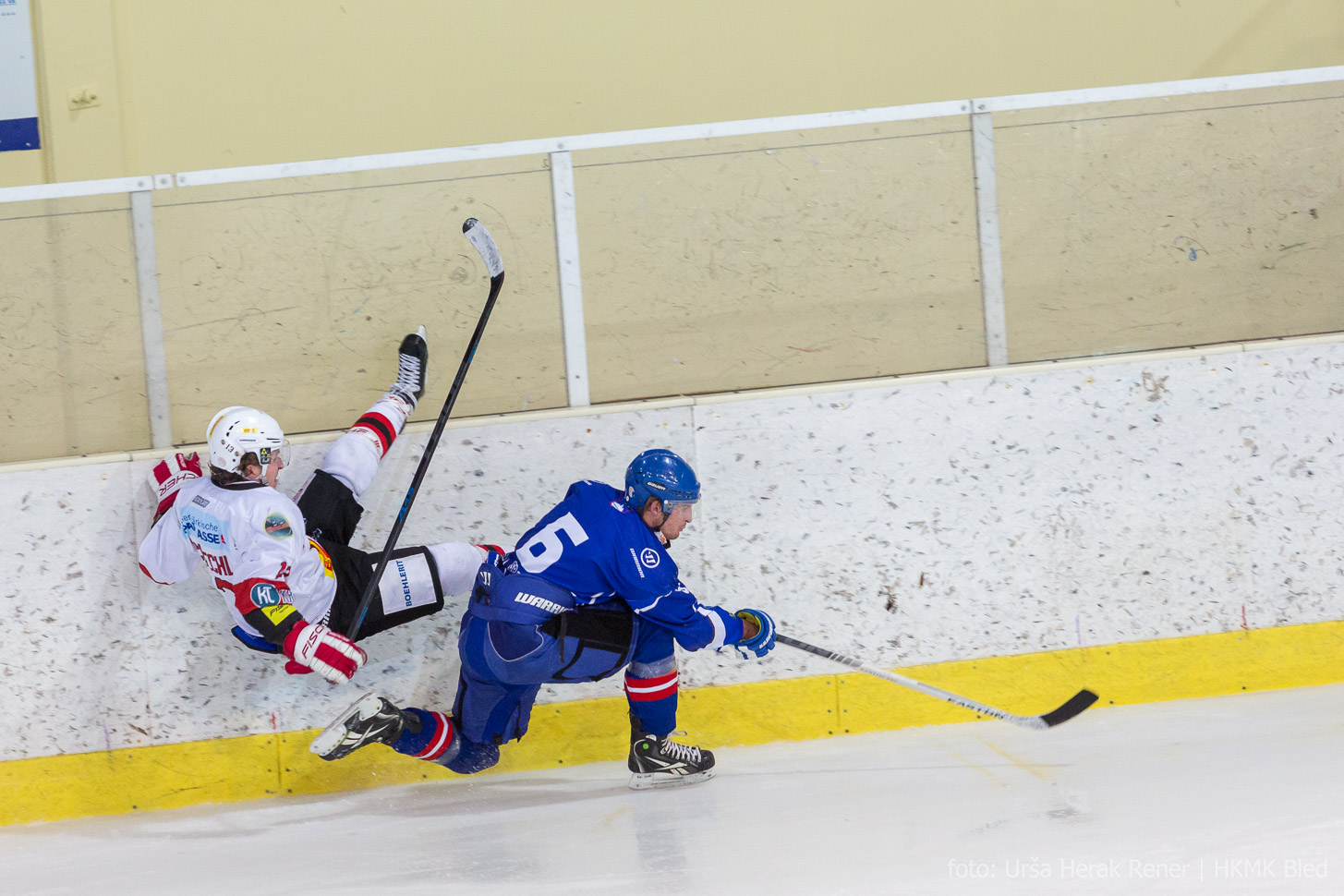 HKMK Bled vs. HC Steelers Kapfenberg